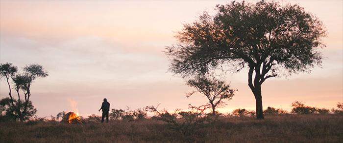 Photo du film Sans signe particulier